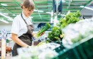 Shop assistant in supermarket re-stocking fresh vegetables